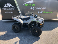 Arctic Cat Alterra 570 2020 2074572225
