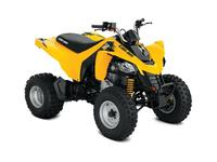 Can-Am DS 250 2019 3038350935