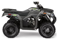 Arctic Cat Alterra 300 2020 4172550963