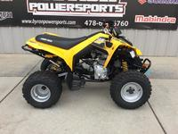 Can-Am DS 250 2019 4782931973