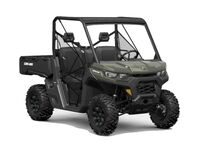 Can-Am Defender DPS HD10 2021 8778861997